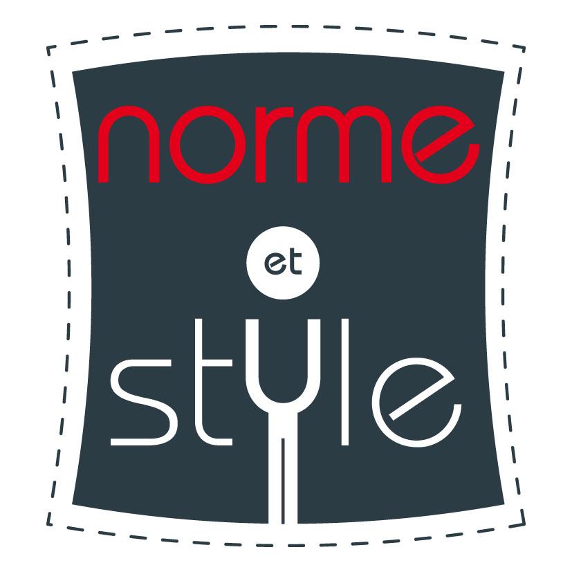 Norme Et Style Un Logo Une Plaquette Des Cartes De Visite Pour